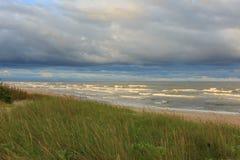 Wilde grasartige Küste im warmen Licht des Sonnenaufgangs Stockfoto