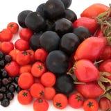 Wilde Herbst-Frucht Lizenzfreie Stockfotografie