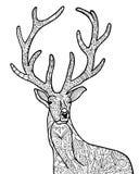 Wilde hertenillustratie Stock Afbeeldingen