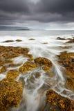 Wilde isländische Küste Stockbilder