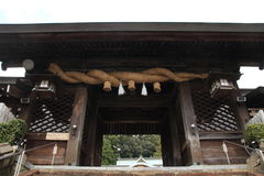 wilde japanische Affen Pflegens in Beppu, Oita Stockfoto