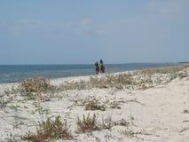 Wilde Küste des Schwarzen Meers Lizenzfreie Stockfotos