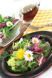 Wilde kruidsalade stock foto's