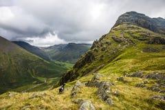 Wilde Landschaft bei Dore Head auf Yewbarrow im See-Bezirk von Cumbria, England lizenzfreie stockbilder