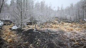 Wilde Morrum-rivier in de sneeuwwinter stock videobeelden