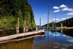 Wilde Natur in den felsigen Bergen Lizenzfreie Stockfotos