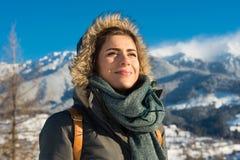 Wilde Natur- und Winterkälte Lizenzfreie Stockfotos