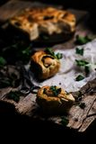 Wilde netel gehele tarwe gekuste broodjes Stijlplattelander royalty-vrije stock foto's