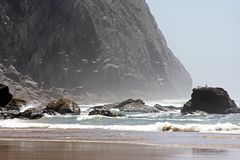 Wilde oceaan met vogels Stock Foto's