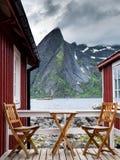 Wilde ontbijtplaats royalty-vrije stock fotografie