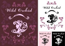 Wilde Orchidee Stock Illustratie