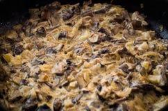 Wilde paddestoelen in een romige saus Royalty-vrije Stock Afbeeldingen