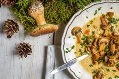 Wilde Pilzsuppe und Moos vom Wald Stockfotos