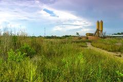 Wilde Rasenflächen Lizenzfreies Stockfoto