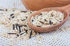 Wilde rijst stock afbeelding