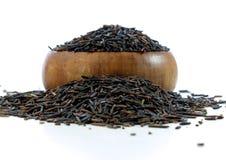 Wilde rijst Stock Afbeeldingen