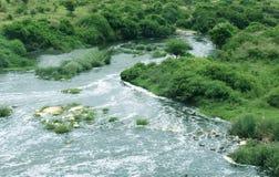Wilde rivier Stock Fotografie