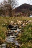 Wilde rivier Stock Afbeeldingen