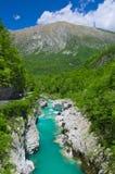 Wilde rivier in de Alpen (Soca/Isonzo) Stock Foto's