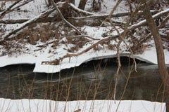 Wilde rivier in de winter Stock Fotografie