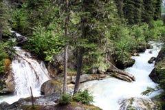 Wilde rivieren in de rotsachtige bergen Canada Stock Foto
