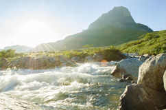 Wilde rivierzon Stock Foto