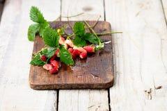 Wilde rote Erdbeeren mit grünen Blättern Stockfoto