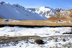 Wilde Schnee-Berge bei Kirgisistan Stockfotografie