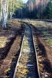 Wilde sporen Stock Afbeeldingen