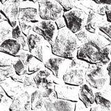 Wilde steentextuur Stock Afbeelding