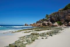 Wilde Steine auf dem weißen Sand, Seychellen Lizenzfreie Stockfotografie