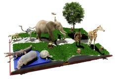 Wilde Tiere vektor abbildung