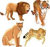 Wilde Tiere Stockfoto