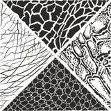 Wilde Tiere kopieren Hintergrund - Illustration lizenzfreies stockfoto