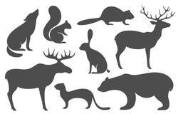 Wilde Tiere Schattenbild Stockfotos