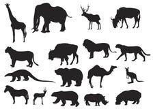 Wilde Tiere verschieden Stockfoto