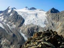 Wilde tl van Pfaff en van Zuckerhà ¼ in de Stubai-Alpen Stock Foto's