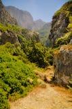Wilde vallei weelderige vegetatie Megalo Seitani, Samos Royalty-vrije Stock Fotografie