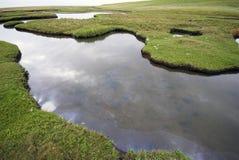 Wilde Wasser-Landschaft Stockbilder