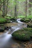 Wilde wateren stock afbeeldingen