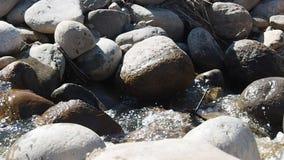 Wilde waterstromen door de keien stock video