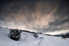 Wilde Winterszene in den Bergen lizenzfreie stockbilder