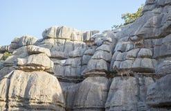 Wilde Ziegen auf den Felsen von Torcal Stockfotografie