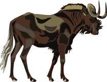 wildebeest серии африканских животных черный иллюстрация штока