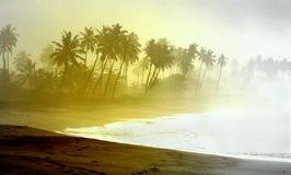 Wilder atlantischer Strand von Palmen gesäumt an Ghana-Küste stockfotografie