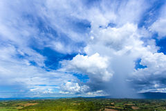 Wilder blauer Himmel über gelben Feldgrünbäumen aller schauen als bunte Landschaft, klare Landschaft Stockfotografie