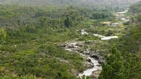 Wilder Fluss Stockbild
