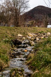 Wilder Fluss Stockbilder