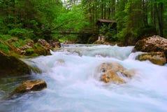 Wilder Fluss lizenzfreie stockbilder