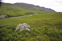 Wilder Fluss Alaska mit buntem Felsen Lizenzfreie Stockbilder